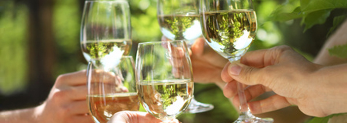 Bio Weißwein