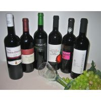 Biowein Paket Rotweine